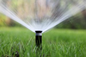 Irrigation in the winter