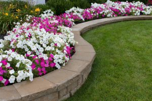 retaining wall with flowers