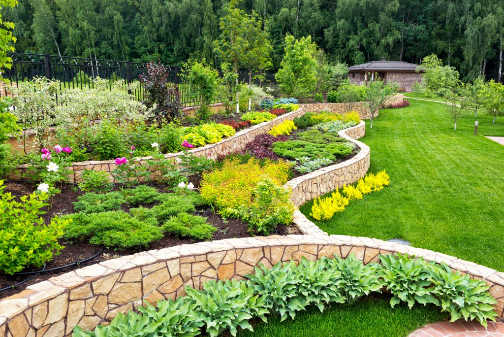 How to improve your flower beds